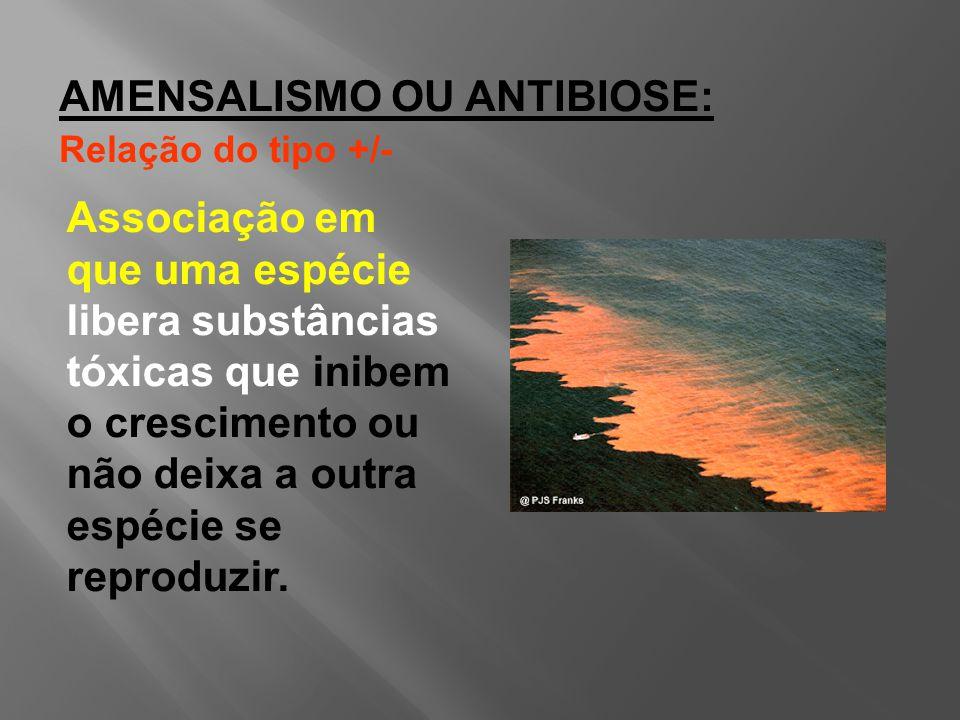 Associação em que uma espécie libera substâncias tóxicas que inibem o crescimento ou não deixa a outra espécie se reproduzir.