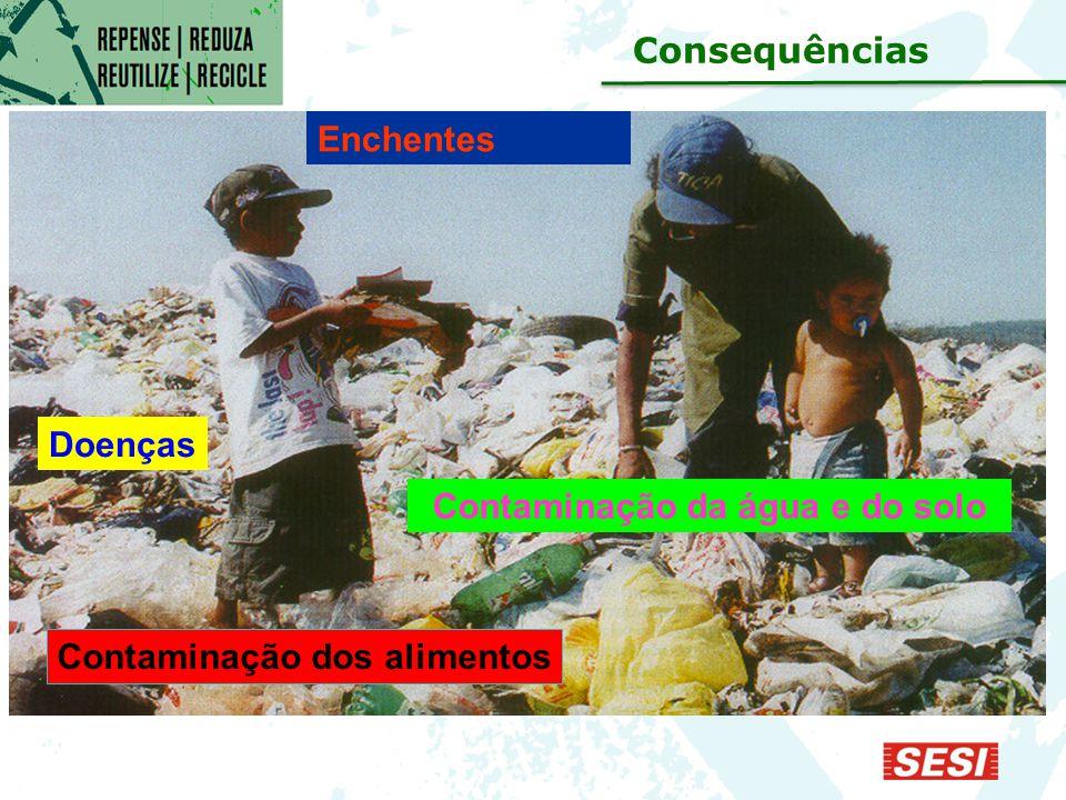 Enchentes Doenças Contaminação dos alimentos Contaminação da água e do solo Consequências