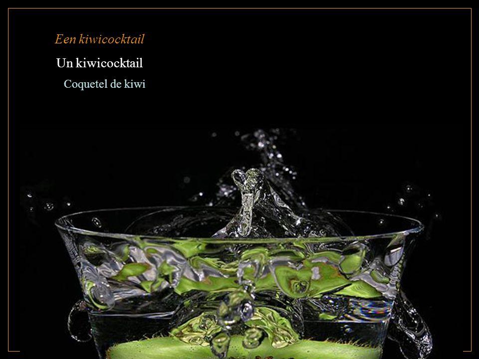 Een kiwicocktail Un kiwicocktail Coquetel de kiwi