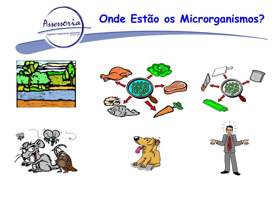 Onde Estão os Microrganismos?