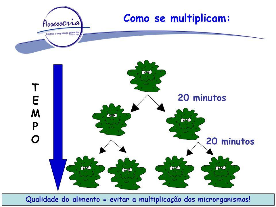 Como se multiplicam: TEMPOTEMPO 20 minutos Qualidade do alimento = evitar a multiplicação dos microrganismos!