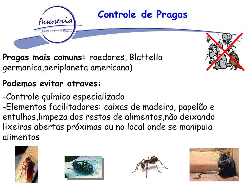 Controle de Pragas Pragas mais comuns: roedores, Blattella germanica,periplaneta americana) Podemos evitar atraves: -Controle químico especializado -E