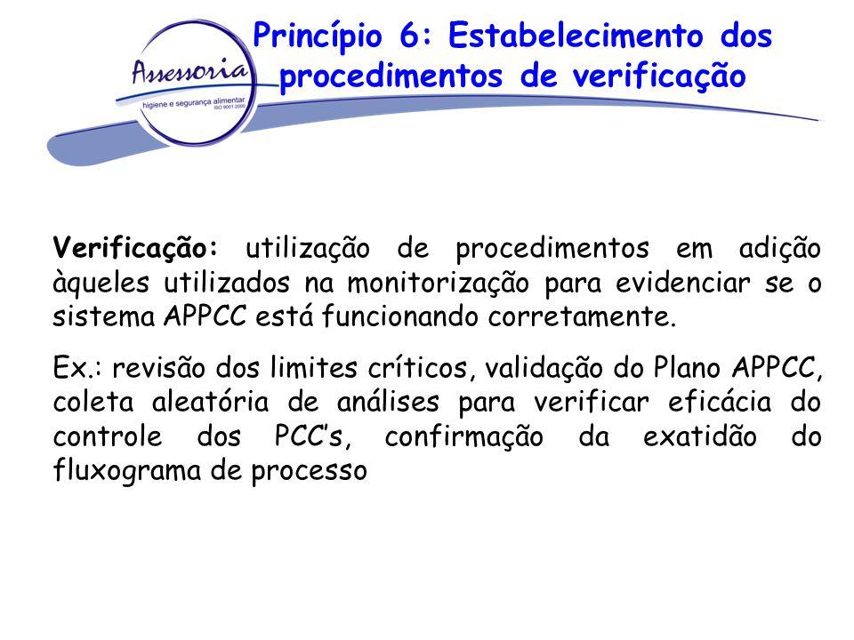 Princípio 6: Estabelecimento dos procedimentos de verificação Verificação: utilização de procedimentos em adição àqueles utilizados na monitorização p