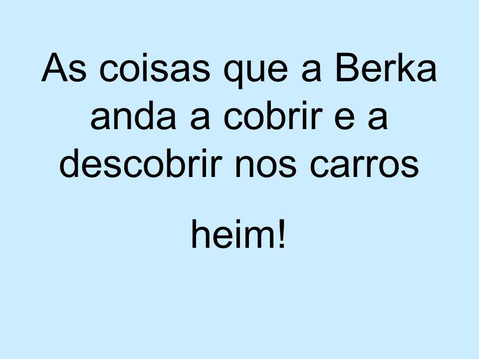 As coisas que a Berka anda a cobrir e a descobrir nos carros heim!