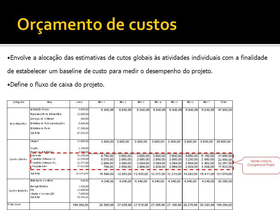 Envolve a alocação das estimativas de cutos globais às atividades individuais com a finalidade de estabelecer um baseline de custo para medir o desemp