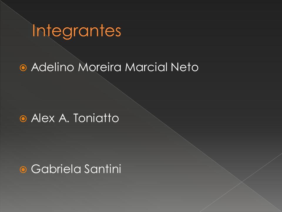  Adelino Moreira Marcial Neto  Alex A. Toniatto  Gabriela Santini