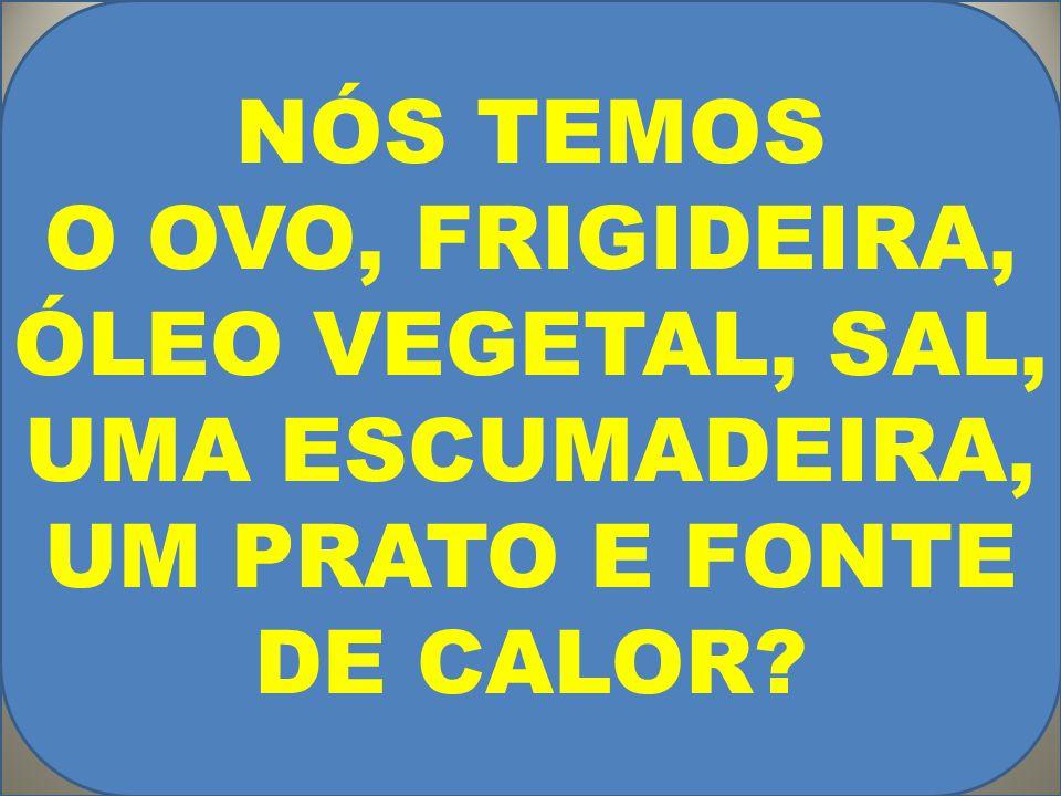 NÓS TEMOS O OVO, FRIGIDEIRA, ÓLEO VEGETAL, SAL, UMA ESCUMADEIRA, UM PRATO E FONTE DE CALOR?