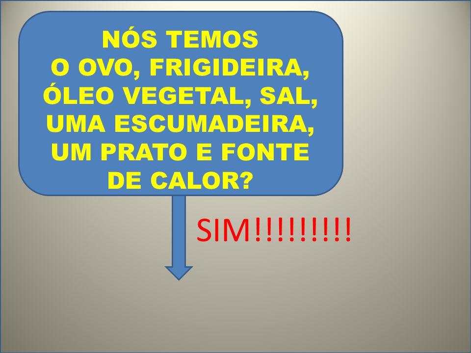 NÓS TEMOS O OVO, FRIGIDEIRA, ÓLEO VEGETAL, SAL, UMA ESCUMADEIRA, UM PRATO E FONTE DE CALOR? SIM!!!!!!!!!