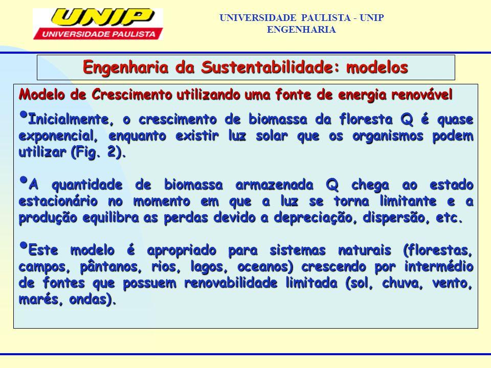 Modelo de Crescimento utilizando uma fonte de energia renovável Inicialmente, o crescimento de biomassa da floresta Q é quase exponencial, enquanto existir luz solar que os organismos podem utilizar (Fig.