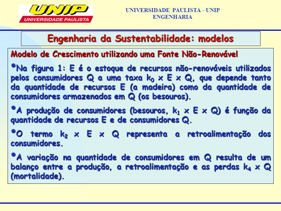 Modelo de Crescimento utilizando uma Fonte Não-Renovável Na figura 1: E é o estoque de recursos não-renováveis utilizados pelos consumidores Q a uma taxa k 0 x E x Q, que depende tanto da quantidade de recursos E (a madeira) como da quantidade de consumidores armazenados em Q (os besouros).