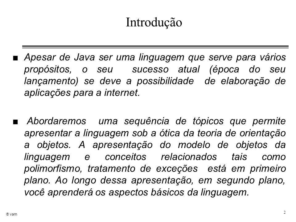® vam 2 Introdução n Apesar de Java ser uma linguagem que serve para vários propósitos, o seu sucesso atual (época do seu lançamento) se deve a possib