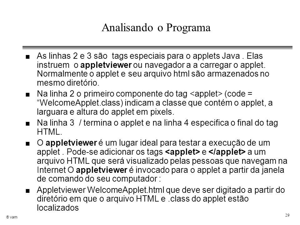® vam 29 Analisando o Programa n As linhas 2 e 3 são tags especiais para o applets Java. Elas instruem o appletviewer ou navegador a a carregar o appl