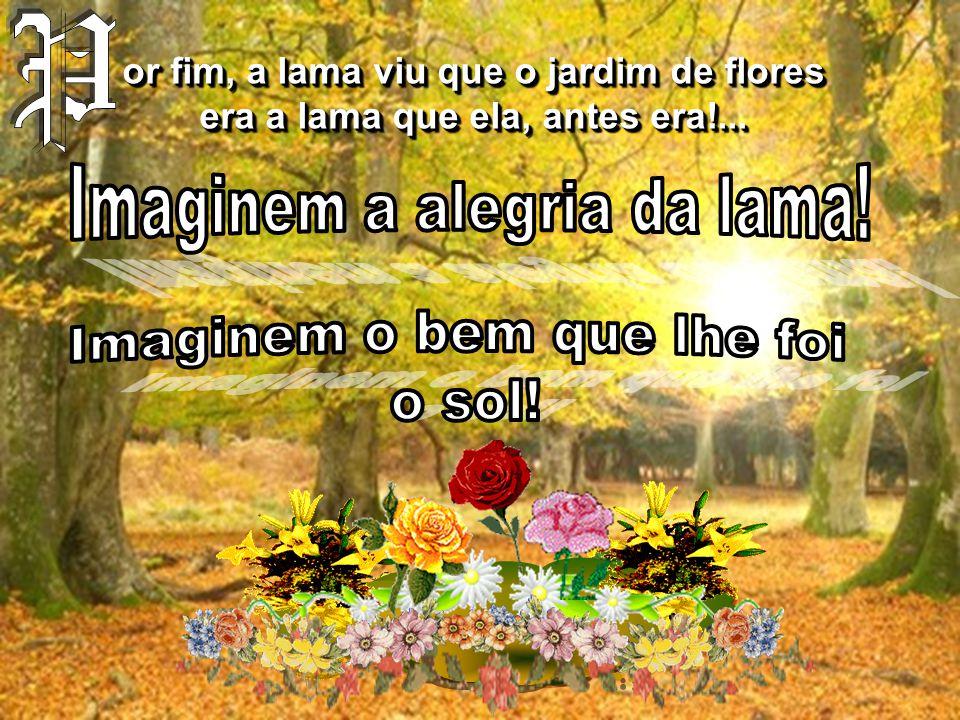 or fim, a lama viu que o jardim de flores era a lama que ela, antes era!...