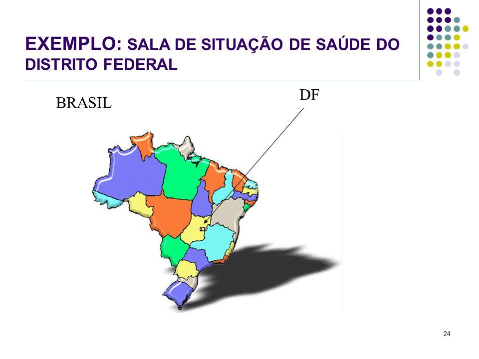 24 EXEMPLO: SALA DE SITUAÇÃO DE SAÚDE DO DISTRITO FEDERAL BRASIL DF