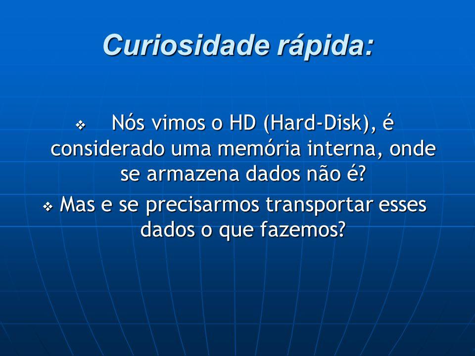 Curiosidade rápida:  Nós vimos o HD (Hard-Disk), é considerado uma memória interna, onde se armazena dados não é.