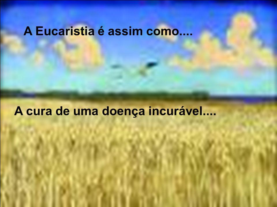 A Eucaristia é assim como.... Um agasalho depois da tempestade, ou um prato de comida depois de uma grande fome...