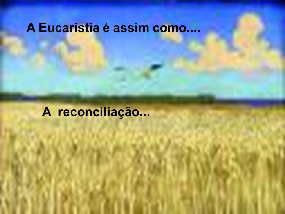 A Eucaristia é assim como.... Um afago do pai depois de seu perdão por uma coisa errada que fizemos...