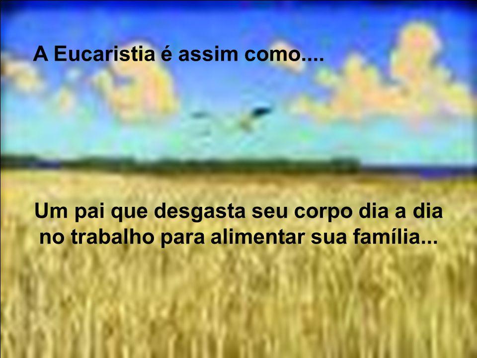 A Eucaristia é assim como.... É como uma mãe que transforma seu corpo em leite para alimentar seu filho...