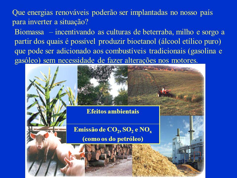 Que energias renováveis poderão ser implantadas no nosso país para inverter a situação? Biomassa – incentivando as culturas de beterraba, milho e sorg