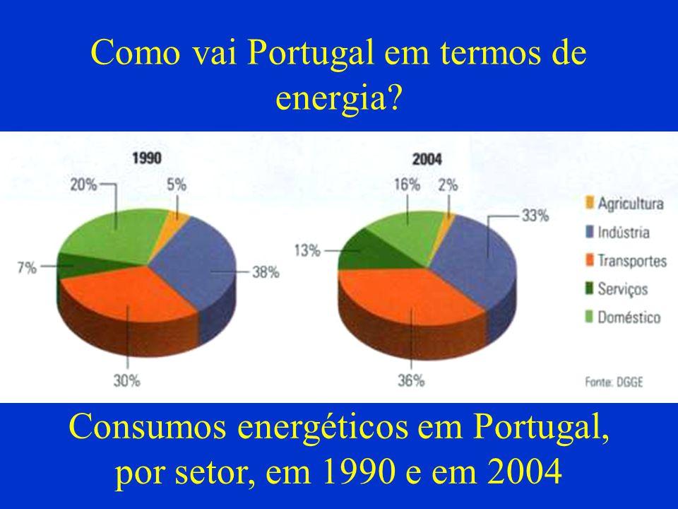 Como vai Portugal em termos de energia? Consumos energéticos em Portugal, por setor, em 1990 e em 2004