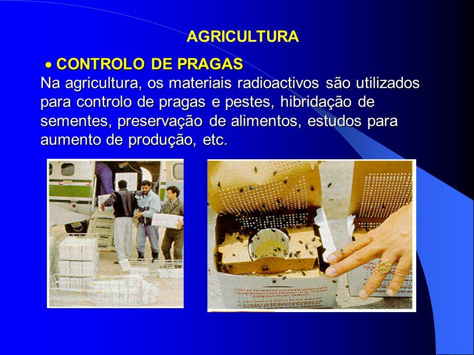  CONTROLO DE PRAGAS Na agricultura, os materiais radioactivos são utilizados para controlo de pragas e pestes, hibridação de sementes, preservação de