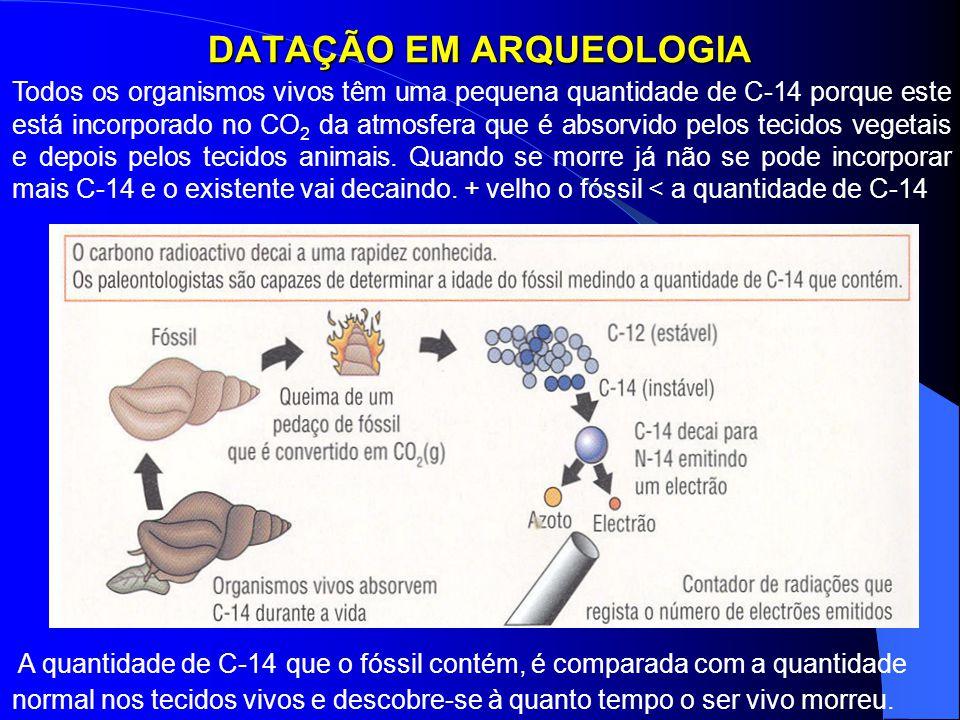 DATAÇÃO EM ARQUEOLOGIA Todos os organismos vivos têm uma pequena quantidade de C-14 porque este está incorporado no CO 2 da atmosfera que é absorvido