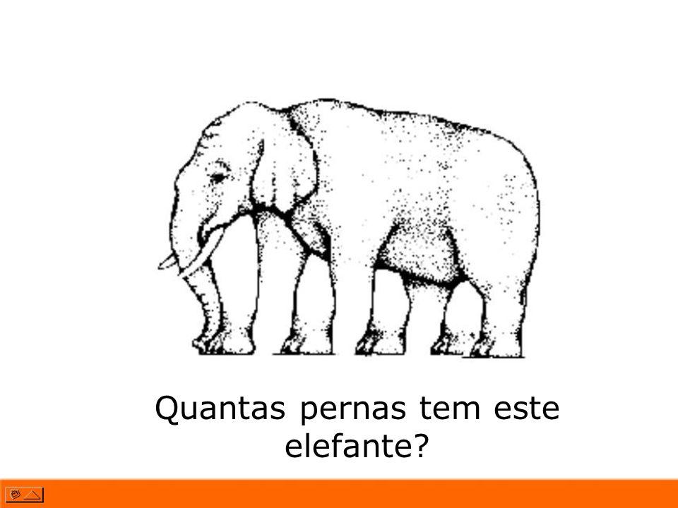 Quantas pernas tem este elefante?