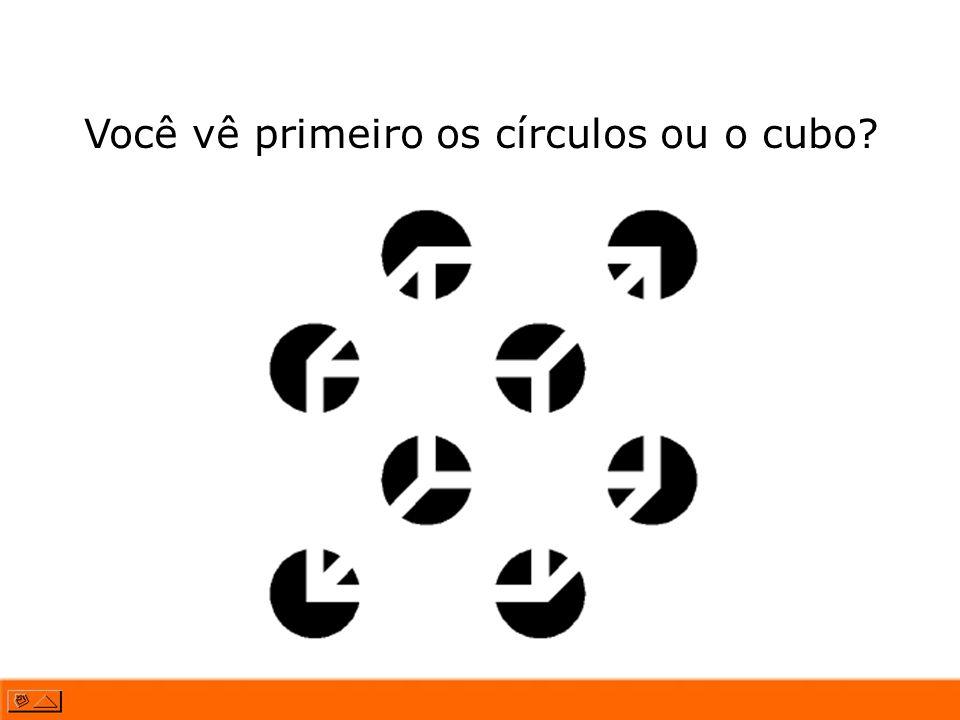 Você vê primeiro os círculos ou o cubo?