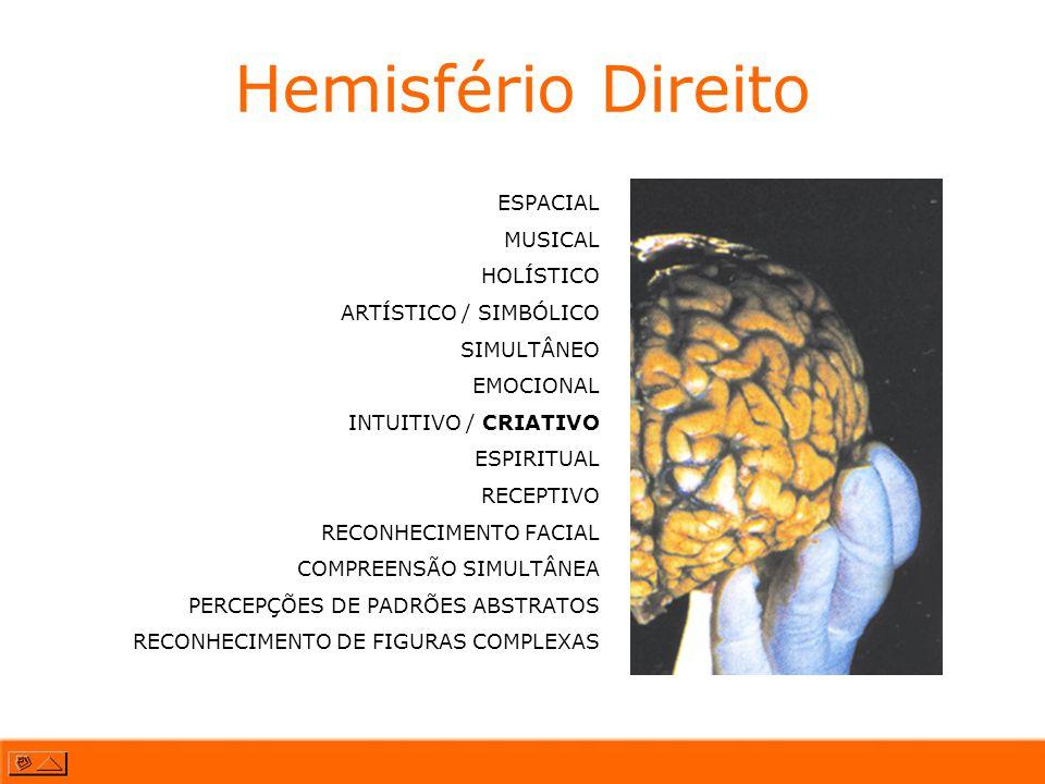 Hemisfério Direito ESPACIAL MUSICAL HOLÍSTICO ARTÍSTICO / SIMBÓLICO SIMULTÂNEO EMOCIONAL INTUITIVO / CRIATIVO ESPIRITUAL RECEPTIVO RECONHECIMENTO FACI