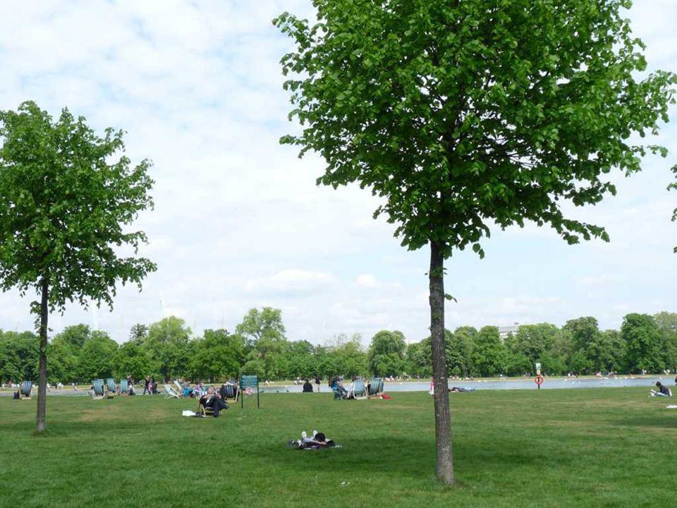 Passeando por Hyde Park Que prazer !
