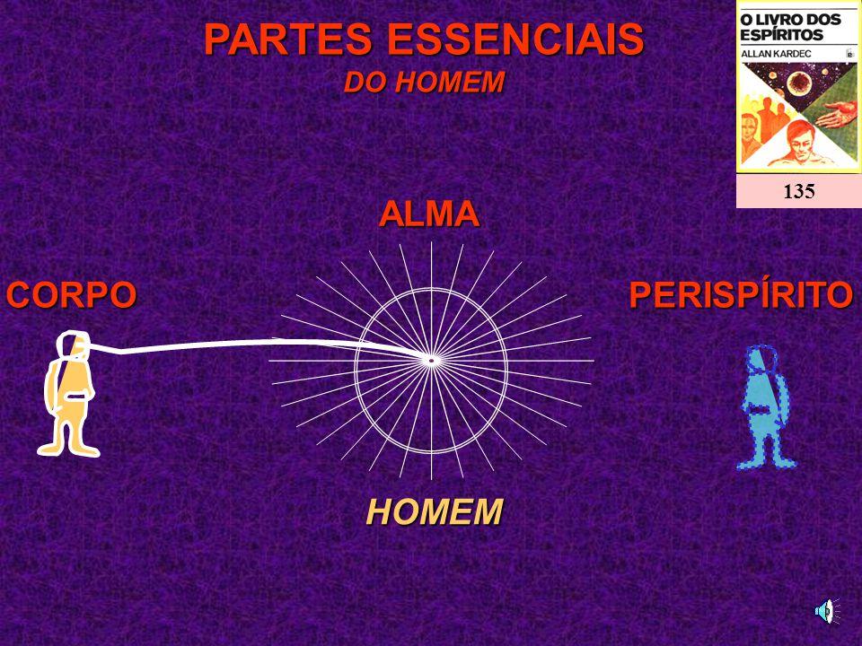 ALMA PARTES ESSENCIAIS DO HOMEM 135 CORPO PERISPÍRITO HOMEM