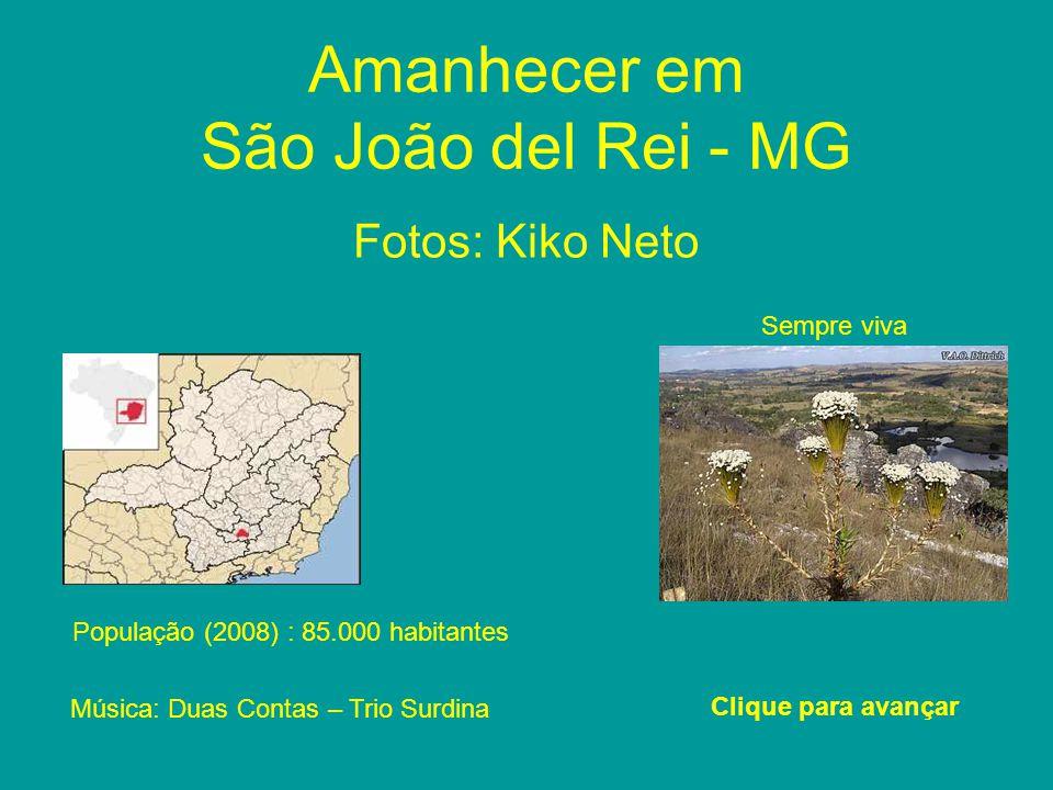 Amanhecer em São João del Rei - MG Fotos: Kiko Neto Clique para avançar População (2008) : 85.000 habitantes Sempre viva Música: Duas Contas – Trio Surdina
