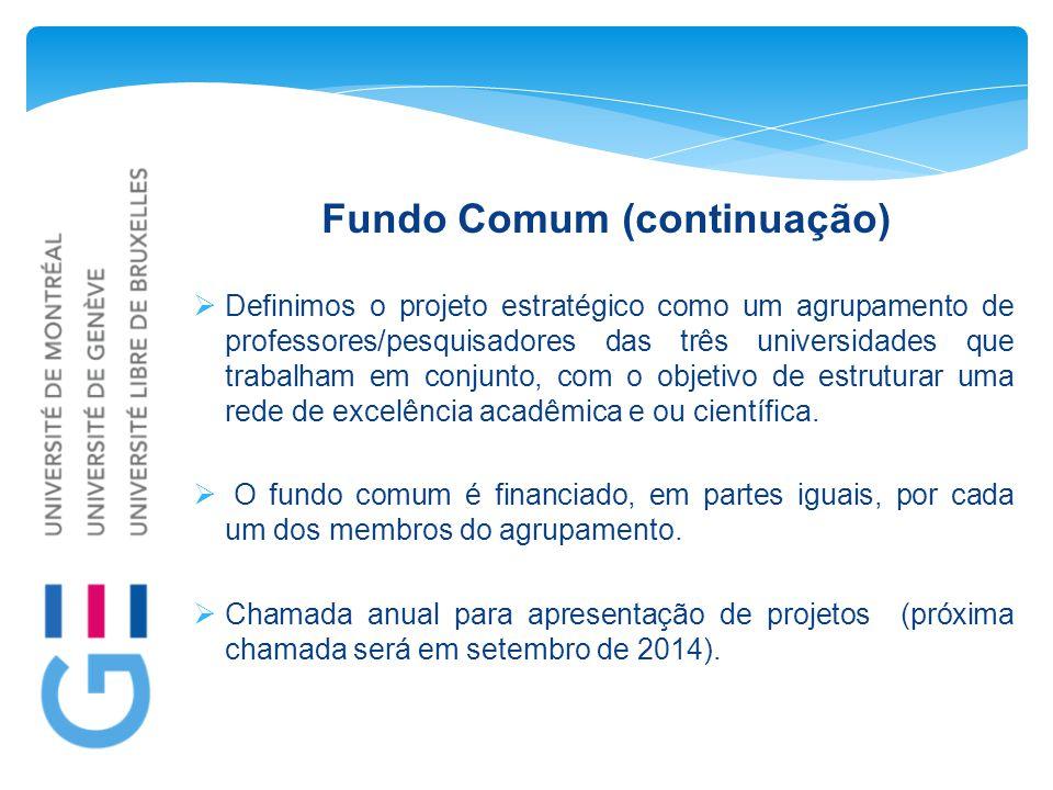 Fundo Comum (continuação)  Definimos o projeto estratégico como um agrupamento de professores/pesquisadores das três universidades que trabalham em conjunto, com o objetivo de estruturar uma rede de excelência acadêmica e ou científica.