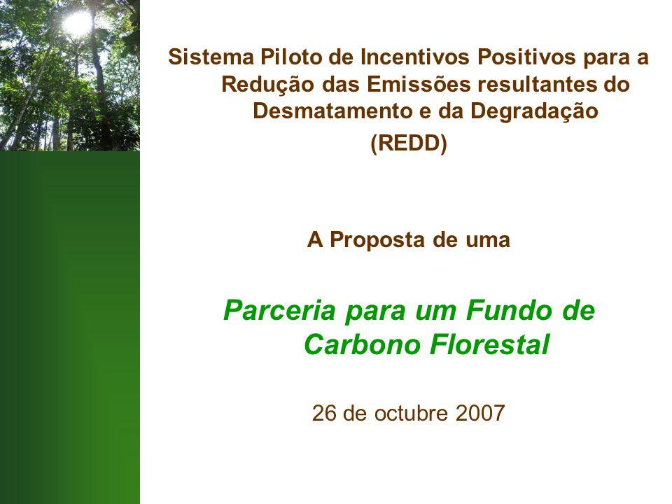 Sistema Piloto de Incentivos Positivos para a Redução das Emissões resultantes do Desmatamento e da Degradação (REDD) A Proposta de uma Parceria para um Fundo de Carbono Florestal 26 de octubre 2007