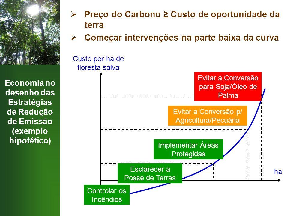 Economia no desenho das Estratégias de Redução de Emissão (exemplo hipotético)  Preço do Carbono ≥ Custo de oportunidade da terra  Começar intervenç
