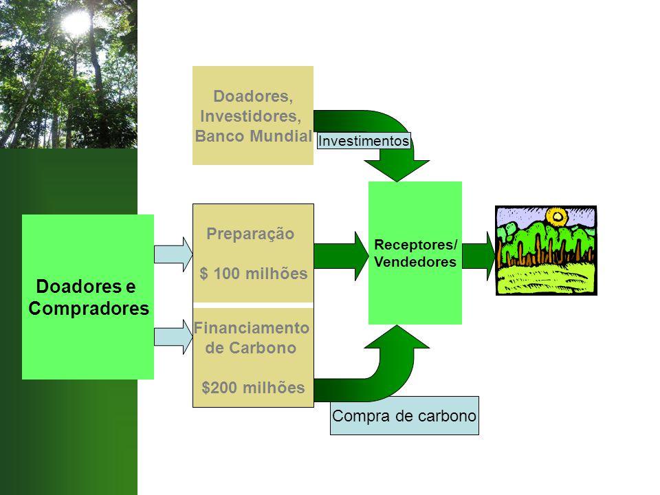 Compra de carbono Doadores e Compradores Financiamento de Carbono $200 milhões Preparação $ 100 milhões Doadores, Investidores, Banco Mundial Receptor
