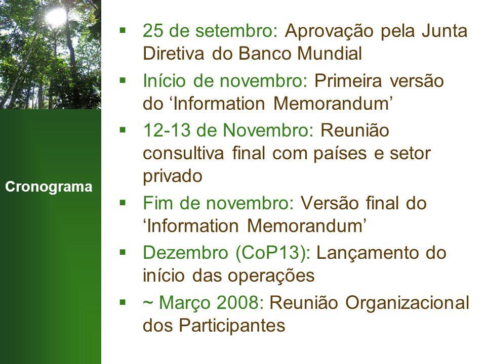 Cronograma  25 de setembro: Aprovação pela Junta Diretiva do Banco Mundial  Início de novembro: Primeira versão do 'Information Memorandum'  12-13