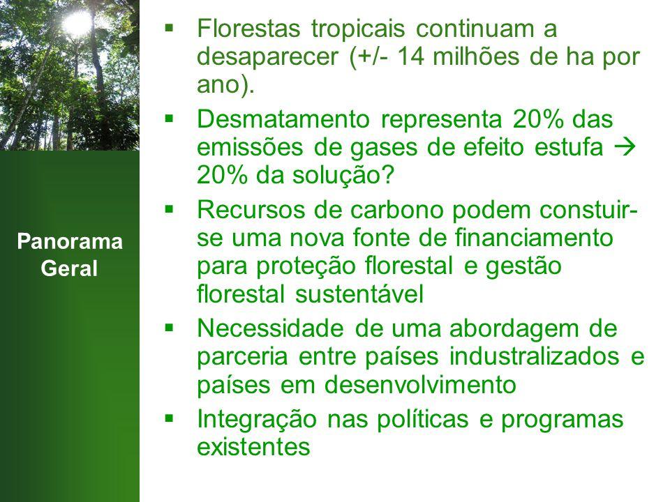 Panorama Geral  Florestas tropicais continuam a desaparecer (+/- 14 milhões de ha por ano).  Desmatamento representa 20% das emissões de gases de ef