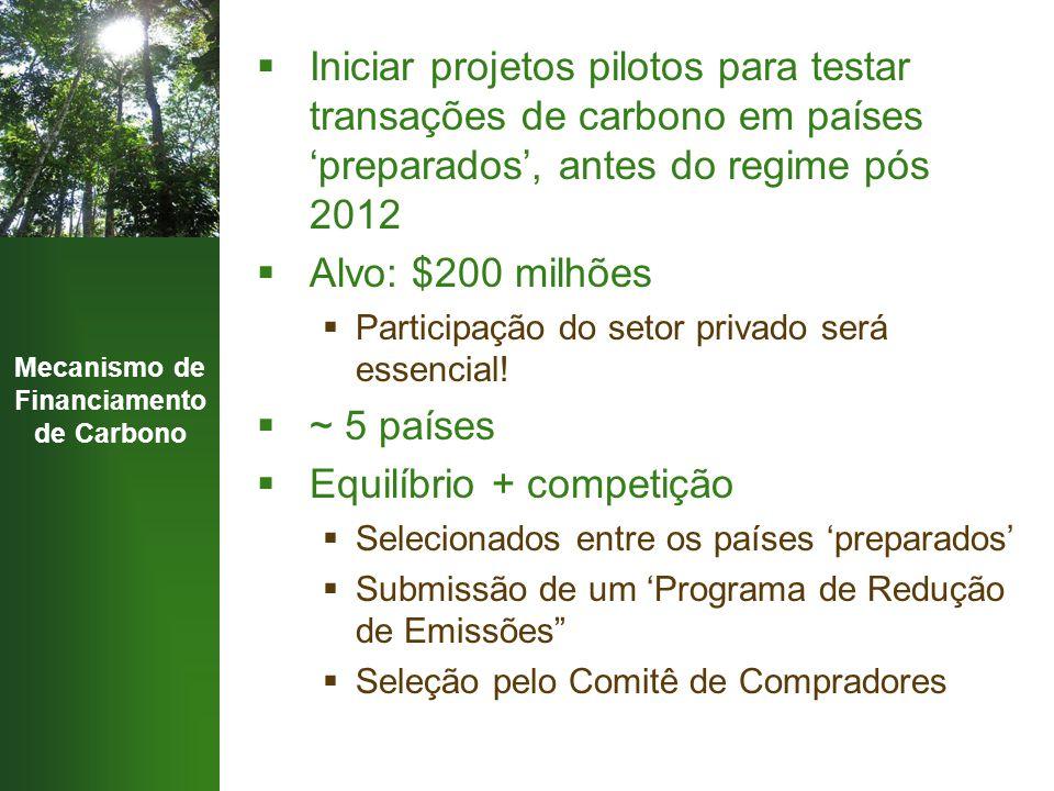 Mecanismo de Financiamento de Carbono  Iniciar projetos pilotos para testar transações de carbono em países 'preparados', antes do regime pós 2012 