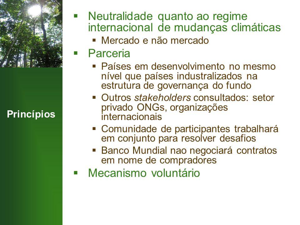 Princípios  Neutralidade quanto ao regime internacional de mudanças climáticas  Mercado e não mercado  Parceria  Países em desenvolvimento no mesm