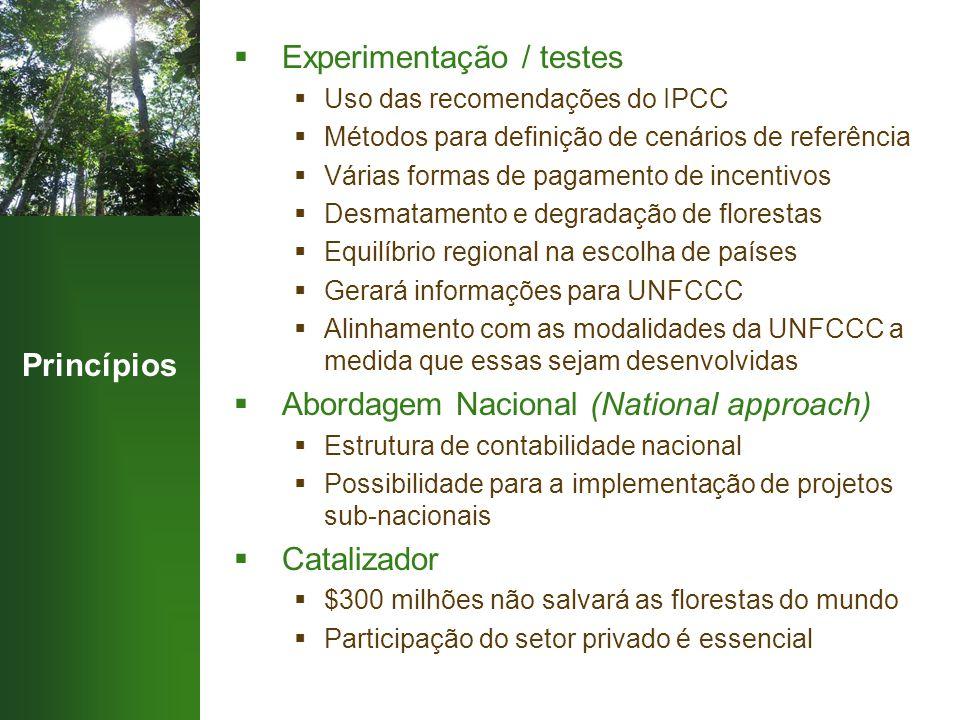 Princípios  Experimentação / testes  Uso das recomendações do IPCC  Métodos para definição de cenários de referência  Várias formas de pagamento d
