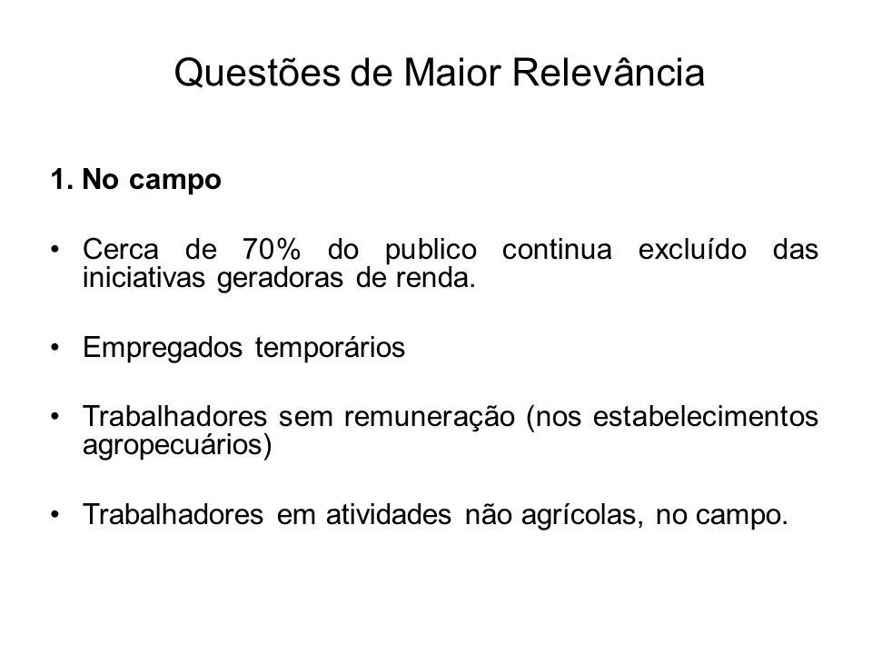 Questões de Maior Relevância 1. No campo Cerca de 70% do publico continua excluído das iniciativas geradoras de renda. Empregados temporários Trabalha