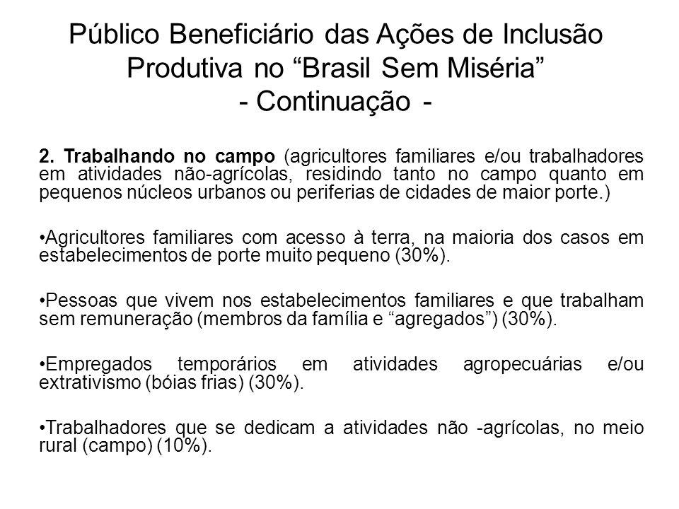 """Público Beneficiário das Ações de Inclusão Produtiva no """"Brasil Sem Miséria"""" - Continuação - 2. Trabalhando no campo (agricultores familiares e/ou tra"""