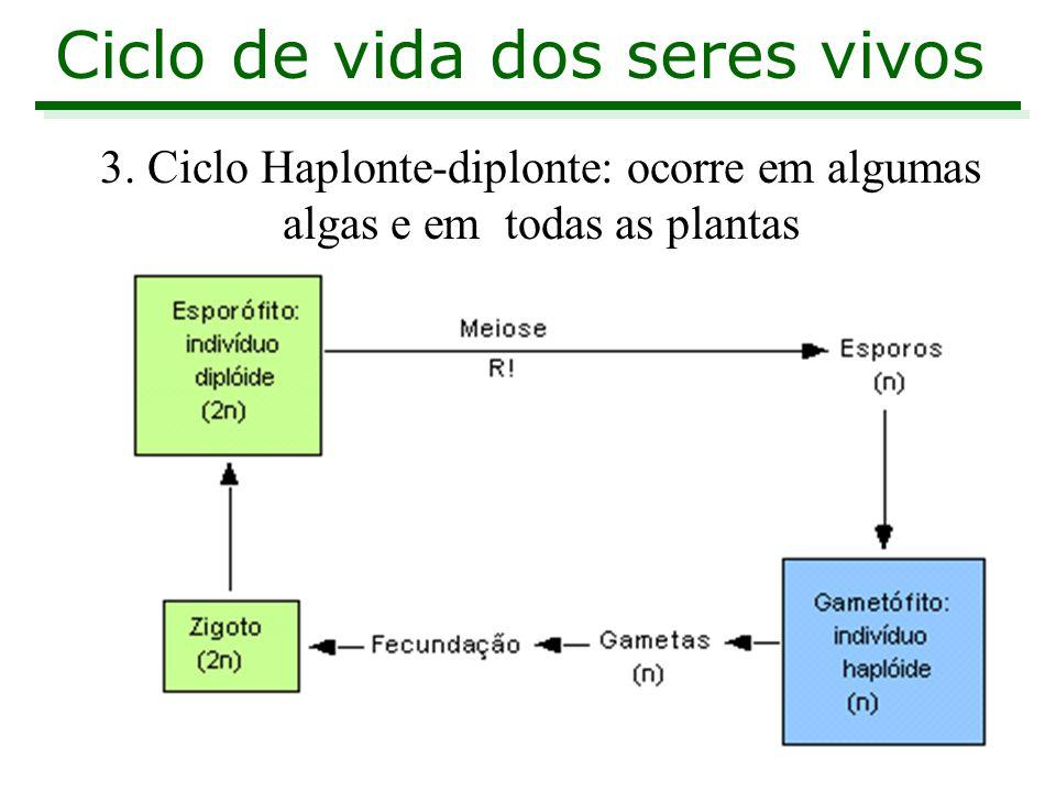 3. Ciclo Haplonte-diplonte: ocorre em algumas algas e em todas as plantas Ciclo de vida dos seres vivos