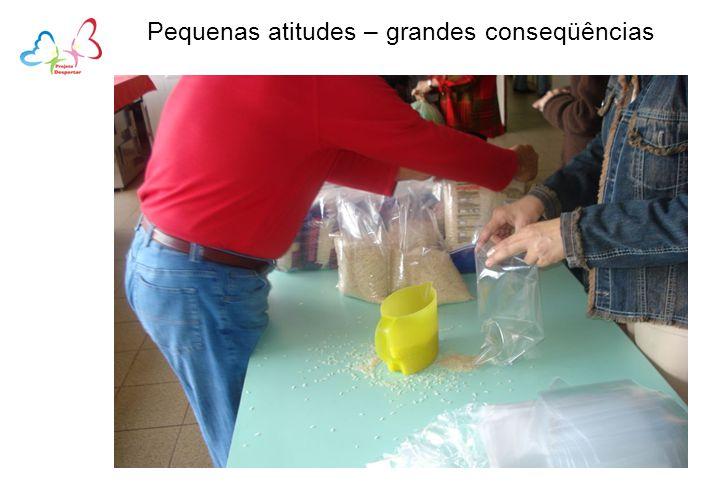 Pequenas atitudes – grandes conseqüências