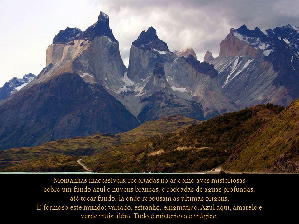 Homenagem a Torres do Paine por Ignácio Larrañaga clic para ver el texto