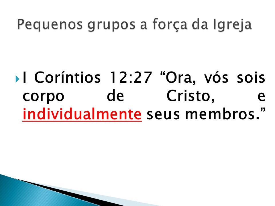 """ I Coríntios 12:27 """"Ora, vós sois corpo de Cristo, e individualmente seus membros."""""""