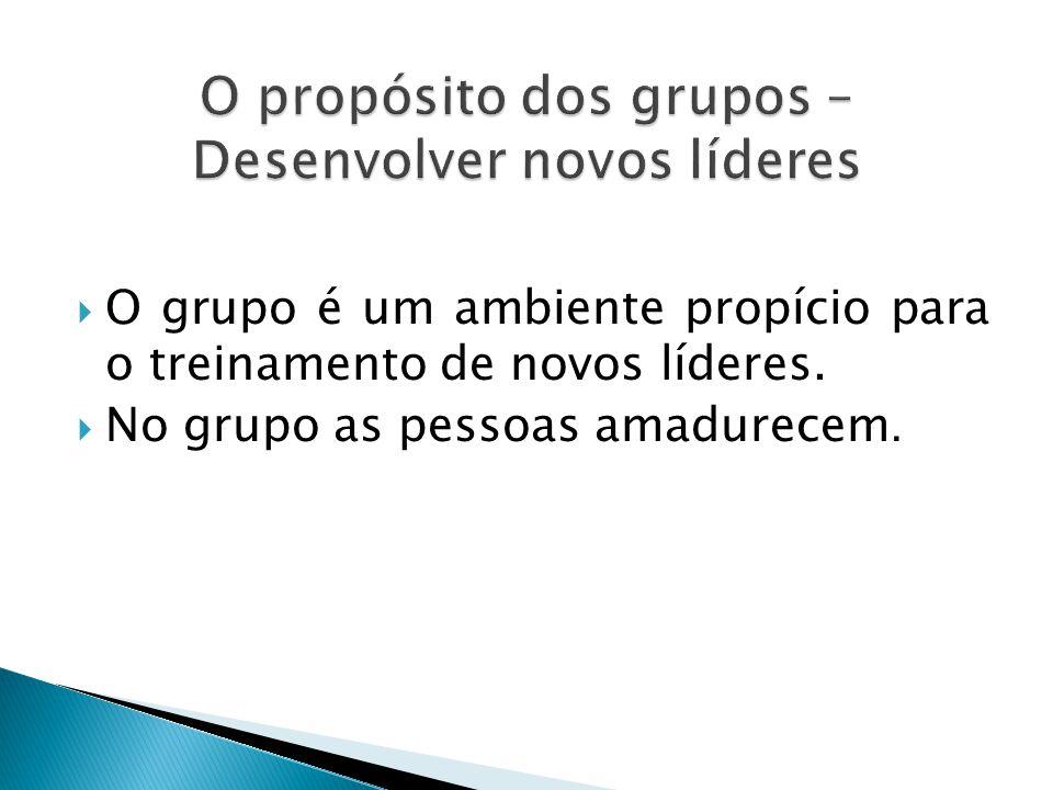  O grupo é um ambiente propício para o treinamento de novos líderes.  No grupo as pessoas amadurecem.