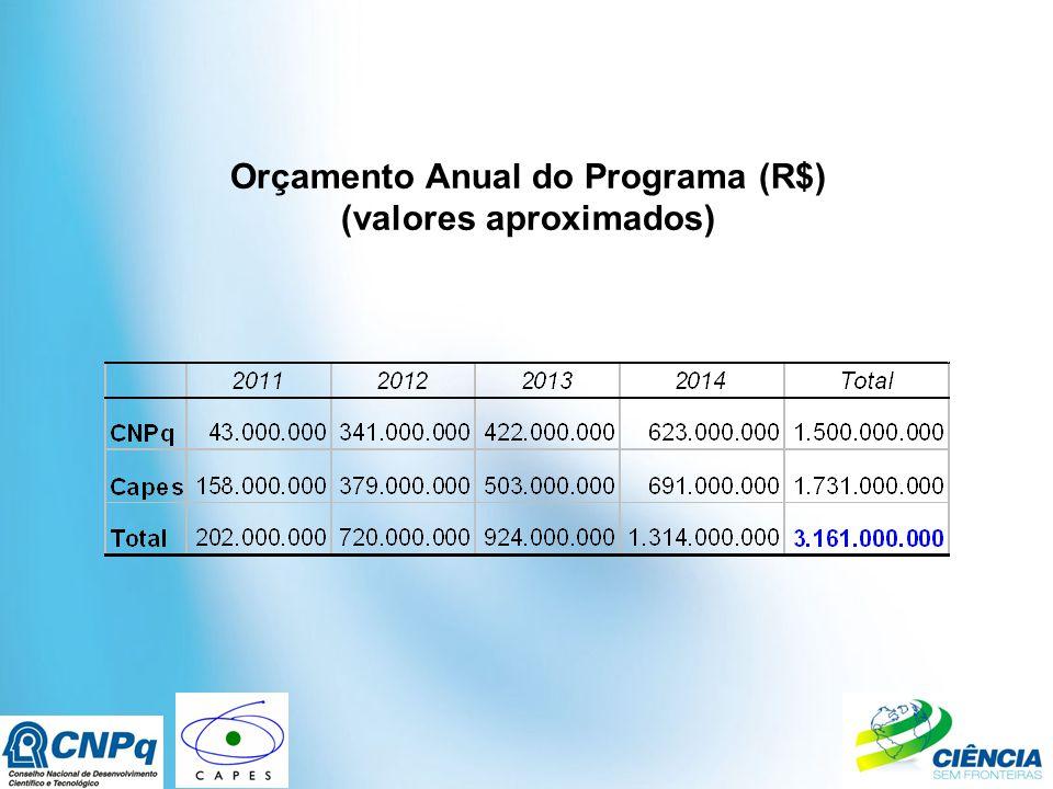 Orçamento Anual do Programa (R$) (valores aproximados)