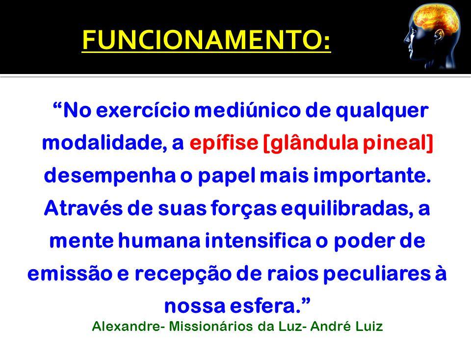 """""""No exercício mediúnico de qualquer modalidade, a epífise [glândula pineal] desempenha o papel mais importante. Através de suas forças equilibradas, a"""